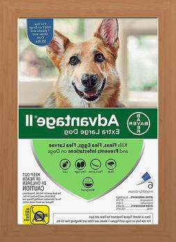 Bayer Advantage II Flea Treatment for Extra Large Dogs Over