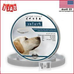 Dog Flea and Tick Control Collar - 8 Months Flea and Tick Co