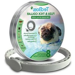 Flea and Tick Control Collar for Dogs All Sizes 8 months pro