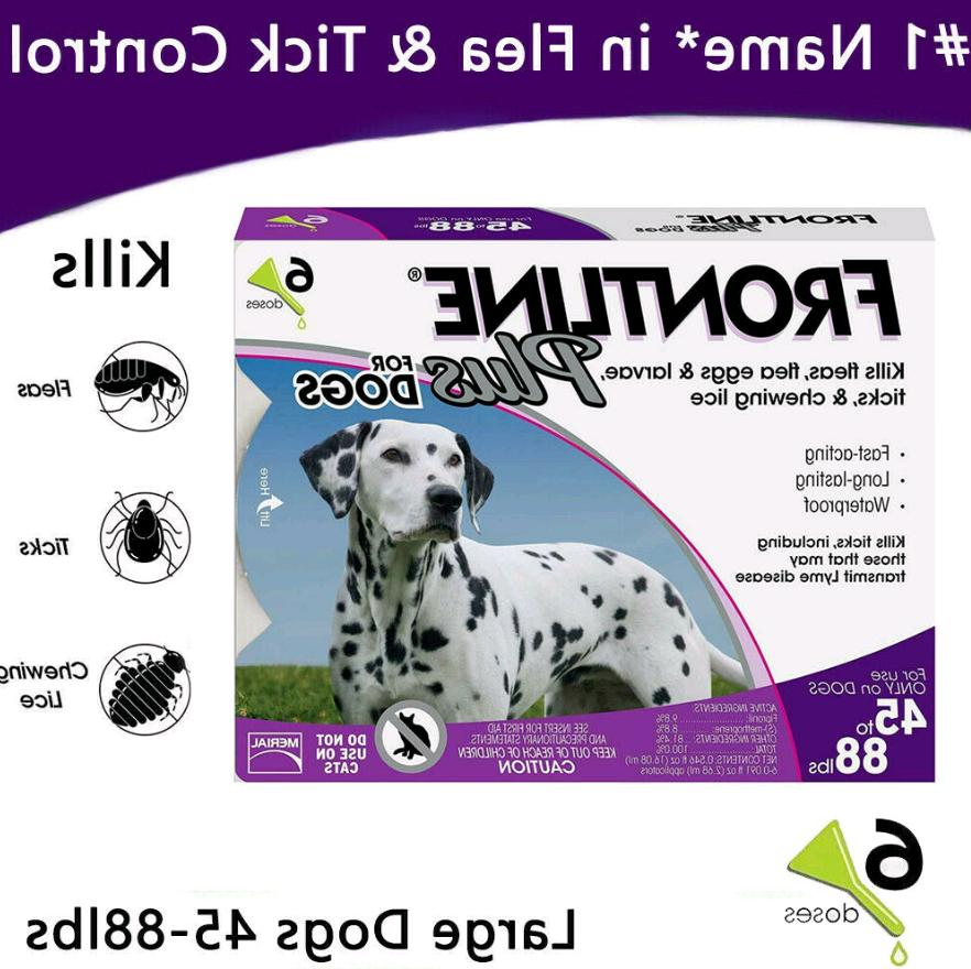 6 doses plus for dogs 45 88