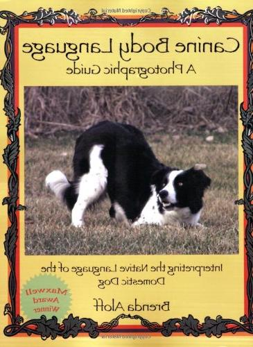 Canine Body Language: A Photographic Guide Interpreting the