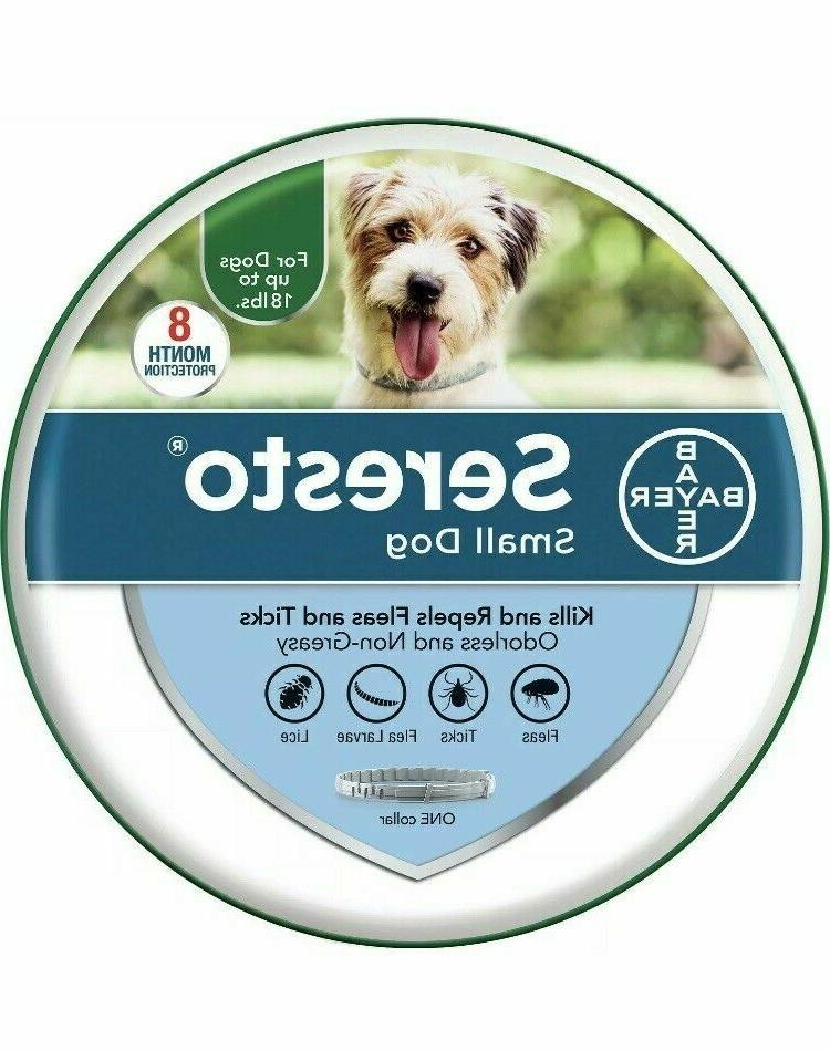 Bayer Health Collar Small Dogs