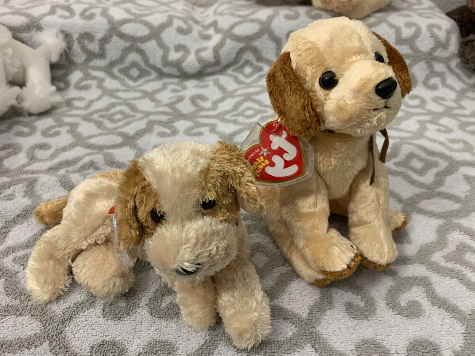 TY Beanie Baby BANJO & BADGES - New w/ Mint Tags!