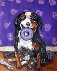 BERNESE MOUNTAIN  dog with dog toy PRINT poster gift modern