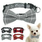 Bow Tie Dog Collar with D-ring Soft for Small Pet Puppy Cat