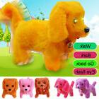 Cute Electronic Pet Children Electric Kid Child Toy Soft Gif