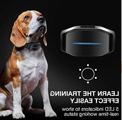 DOG CARE - Effective for Dogs Sound Vibration &Automatic