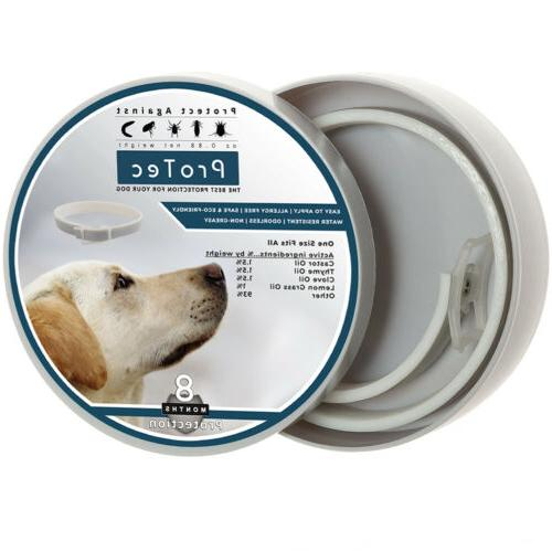 Dog Flea and Control Collar Months and Control for