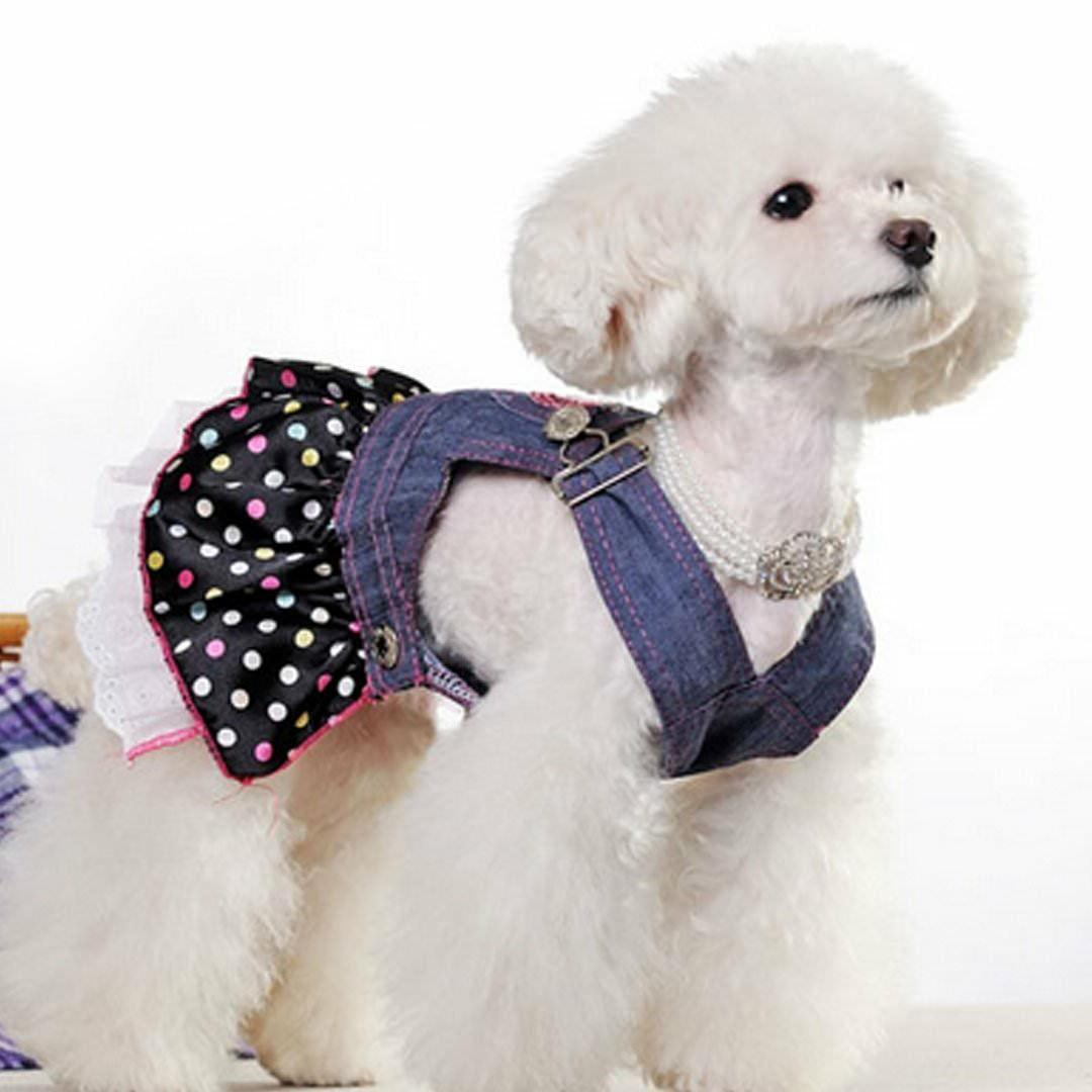Dresses For Canine Pet Casual
