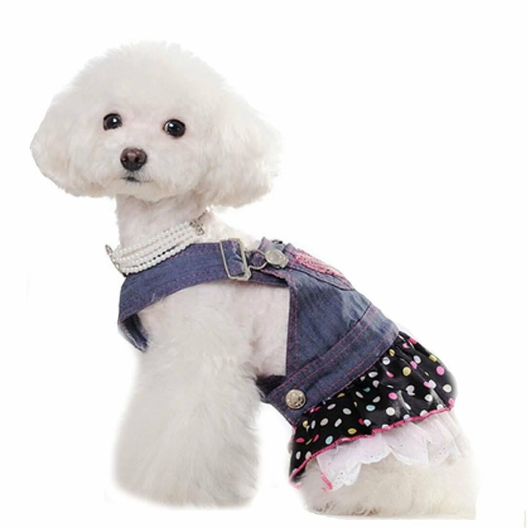 Dresses Canine Pet Skirt Casual Clothing192481200119
