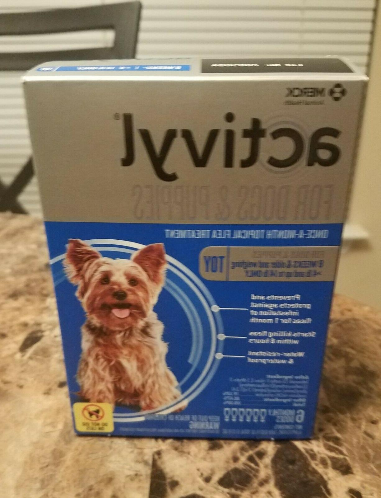 flea treatment for toy dogs and puppies
