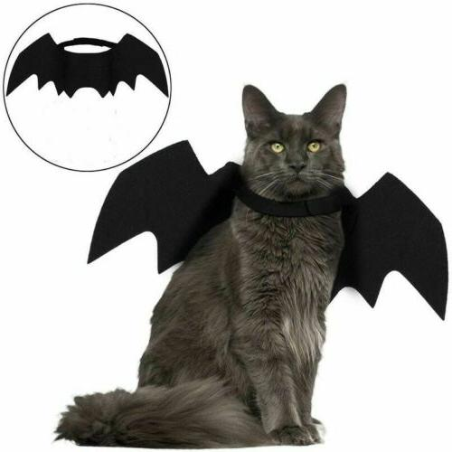 Halloween Bat Apparel for Dogs and