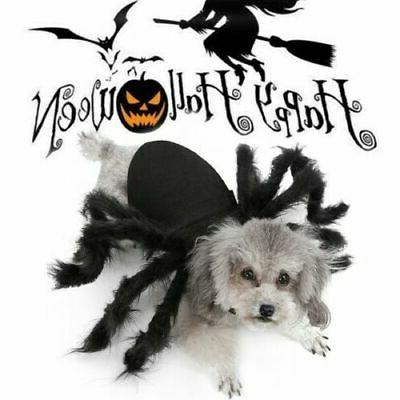 halloween spider pet costume cool cosplay clothes