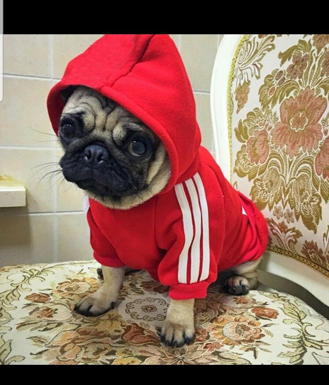 * Hoodies Button Sports Apparel For