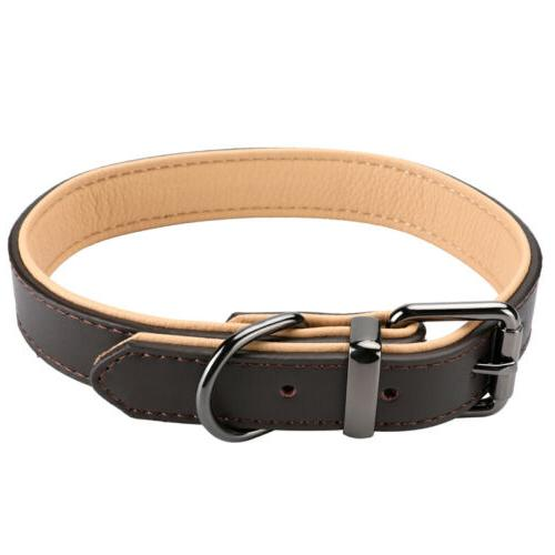 Padded Genuine Leather Dog Collar, Duty Collars Dogs