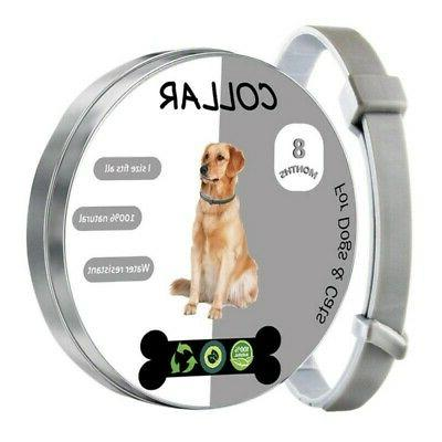 Pet Tick And Flea Remover Collar For Dogs/Cats, Kill Ticks &