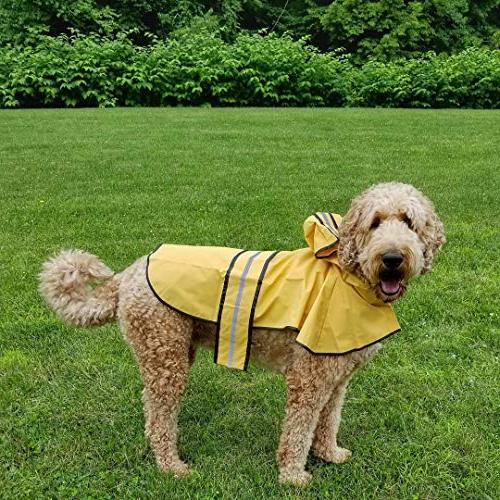 Fashion Days Slicker Yellow for small gear Dog Clothing by Looking Good