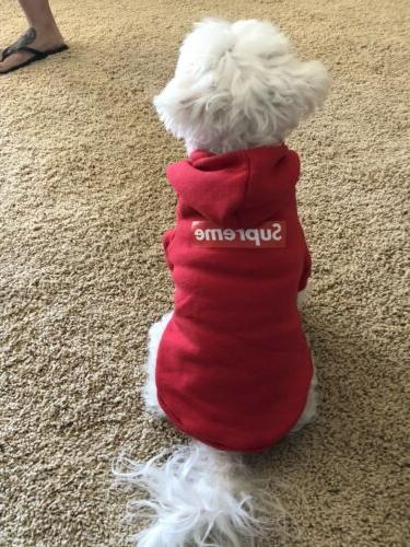 Red Supreme Hoodie For Small Dogs SiZe XS-Large