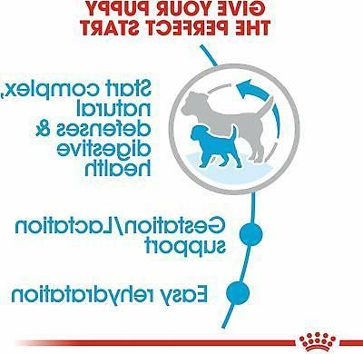 Royal Canin Size Nutrition Starter Mother And Food