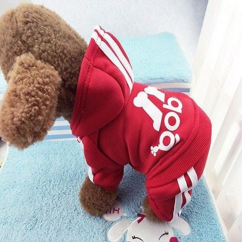 Adidog Sweater Clothes For Cat
