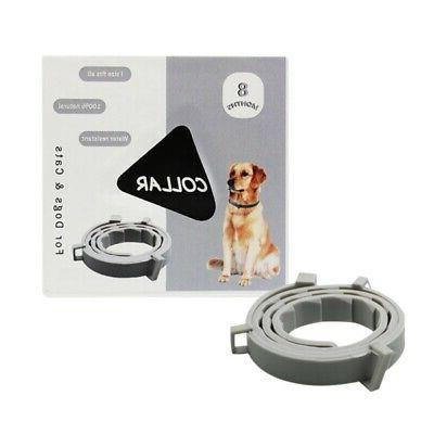 seresto pet flea and tick collar
