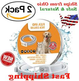 Natural Flea and Tick Collar for Large Dogs 8 Months Control